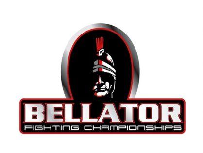 Компания Bellator - турниры, чемпионские титулы, правила, весовые категории