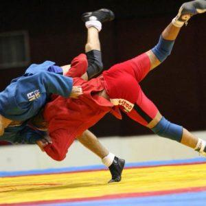 Боевое или спортивное самбо, что выбрать